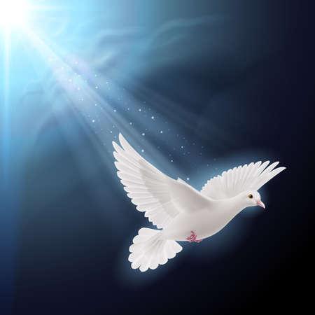 Ilustración de White dove flying in sunlight against dark  blue sky as symbol of peace - Imagen libre de derechos