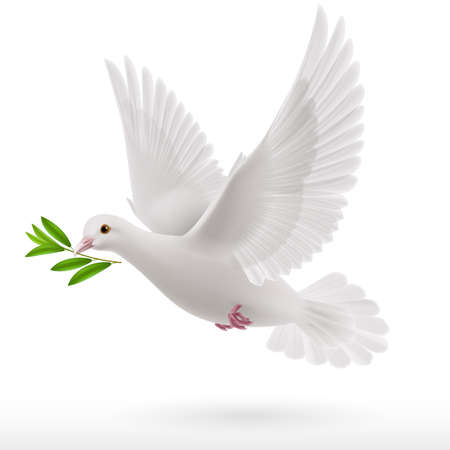 Illustration pour dove flying with a green twig in its beak - image libre de droit