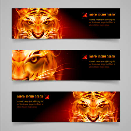 Illustration for Set banners. Fire tiger message. Black background - Royalty Free Image