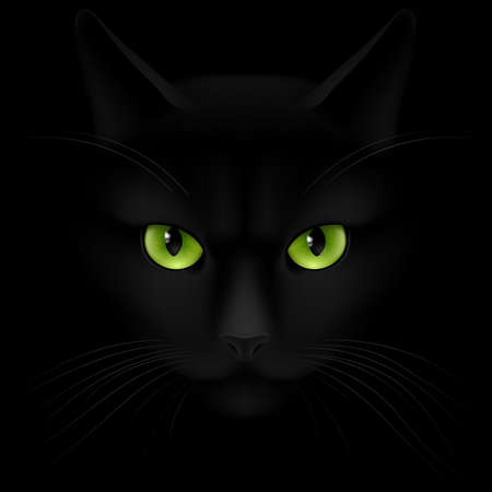 Illustration pour Black cat with green eyes looking out of the darkness - image libre de droit