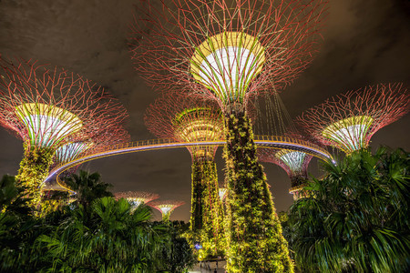 Photo for Illuminated Supertrees in Gardens by the Bay at night, Singapore - Royalty Free Image