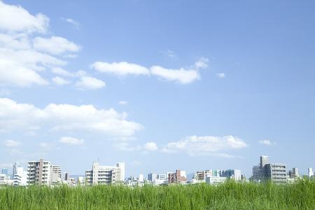 Foto de Grassland and city - Imagen libre de derechos