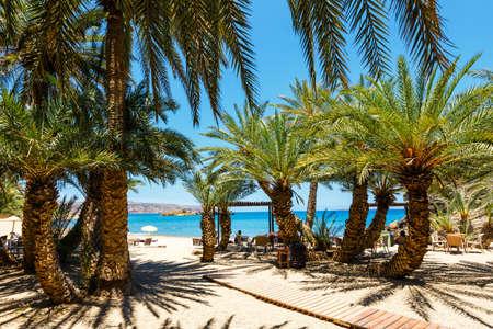 Foto de Famous beach at Vai with a beautiful palm forest on east Crete, Greece - Imagen libre de derechos