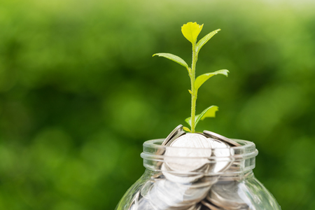 Foto de Selective focus on green sprout plant on jar with full of coins as growth finance investment concept. - Imagen libre de derechos
