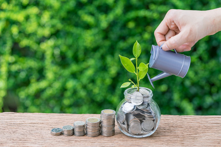 Photo pour Stack of coins and growth sprout plant with hand watering as business finance or grow investment concept. - image libre de droit