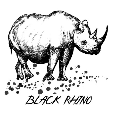 Illustration for Hand drawn sketch style rhino isolated on white background. - Royalty Free Image