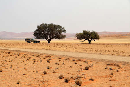 Photo for lunch in the beautiful desert Sossusvlei - Namibia Africa - Royalty Free Image