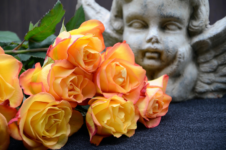 Photo for Yellow orange rose in front behind an angel - Royalty Free Image