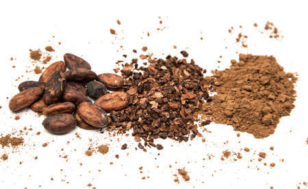 Photo for Cocoa beans, ground cocoa and cocoa powder - Royalty Free Image