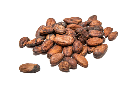 Photo for Raw cocoa (cacao) beans isolated on white - Royalty Free Image
