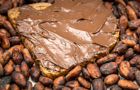 Photo for Piece of bread covered with chocolate paste and cocoa beans - Royalty Free Image