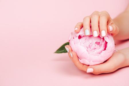 Foto de Stylish trendy female manicure. Peony flower in beautiful young woman's hands. Pink background. - Imagen libre de derechos