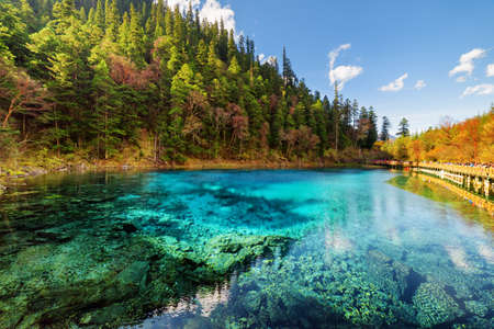 Photo for Amazing view of the Five Coloured Pool (the Colorful Pond) with azure crystal clear water among fall woods and evergreen forest in Jiuzhaigou nature reserve (Jiuzhai Valley National Park), China. - Royalty Free Image