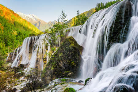 Photo for Beautiful view of the Pearl Shoals Waterfall among scenic wooded mountains and evergreen forest in Jiuzhaigou nature reserve (Jiuzhai Valley National Park), China. Amazing autumn landscape at sunset. - Royalty Free Image