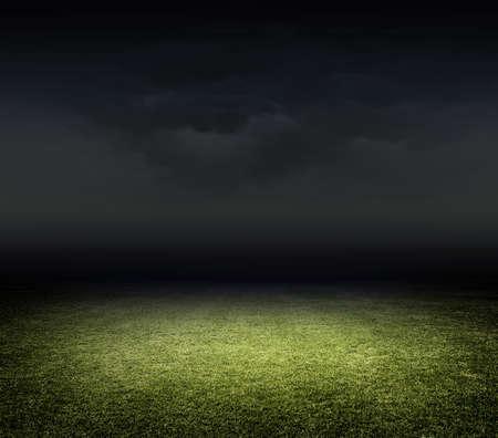 Photo pour Stadium grass - image libre de droit