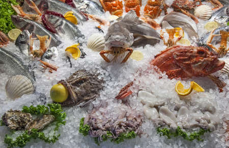 Fish and seafood on ice bed
