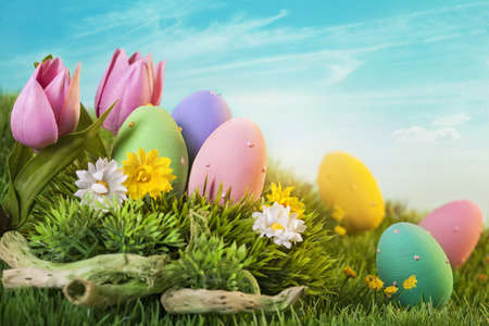 Photo for Easter eggs  on green grass - Royalty Free Image
