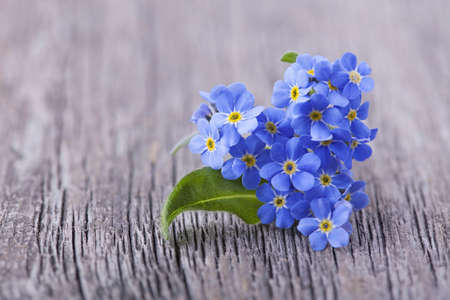 Photo for Forgetmenot flowers in heart shape on a wooden background - Royalty Free Image