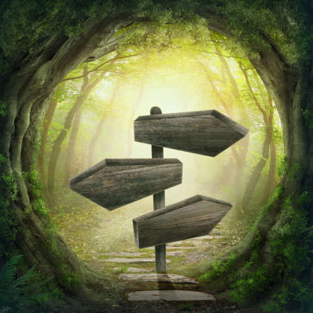 Photo for Wooden arrows road sign in the magic dark forest - Royalty Free Image