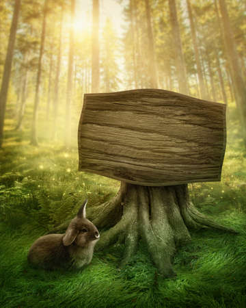 Photo for Wooden sign in the magic dark forest - Royalty Free Image