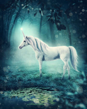 Photo for White unicorn in a dark forest - Royalty Free Image