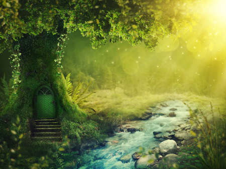 Photo for Deep magic forest with sunshine - Royalty Free Image