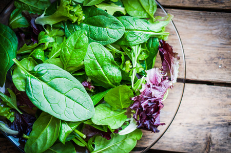 Photo for salad mix - Royalty Free Image
