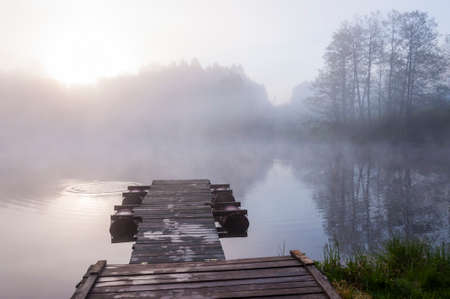 Photo for Morning sunrise fog above forest lake and pier - Royalty Free Image