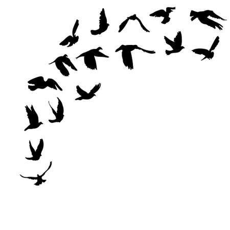 Illustration pour Doves and pigeons set for peace concept and wedding design. Vector illustration - image libre de droit