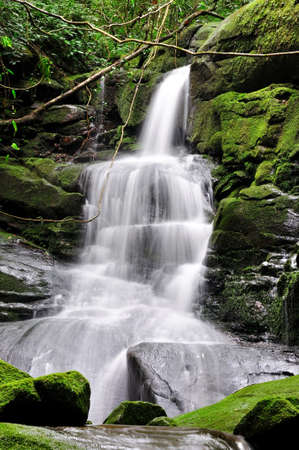 Photo for waterfall at poo soi dao, national park, thailand - Royalty Free Image