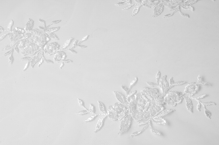 Photo for texture Tulle is white Growing in a bold floral design do not miss the chance to purchase this white on white floral embroidered tulle Large floral vignettes grow  columns over a clean soft tulle - Royalty Free Image