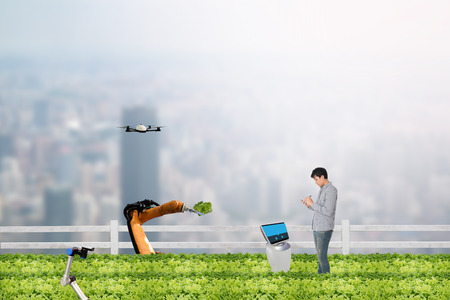 Foto de smart farming concept, Agronomist or Farmer work in the urban or vertical farm with robot (artificial intelligence) and check,management, monitor keep data analysis in each day in the agriculture farm - Imagen libre de derechos