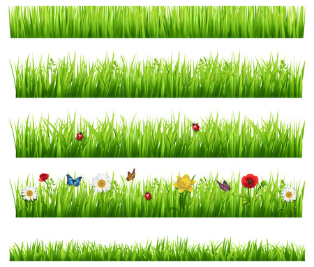 Illustration pour Green grass collection  - image libre de droit