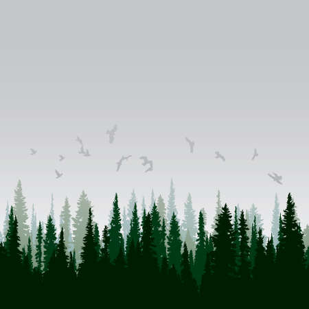Illustration pour Panorama of wild coniferous forest - image libre de droit