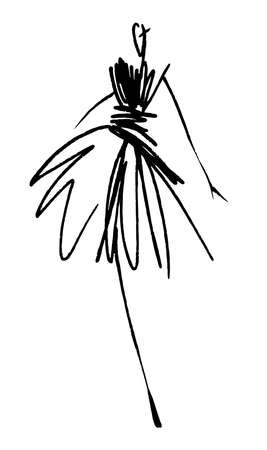 Illustration for Fashion girl sketch hand drawn , stylized silhouettes isolated. Vector fashion illustration. - Royalty Free Image
