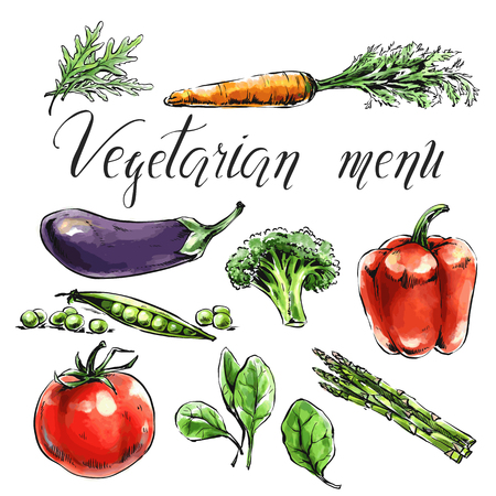 Set of vegetables: spinach, tomato, broccoli, eggplant, carrot, asparagus etc Healthy food for health care and vegetarian menu. Freehand watercolor vector illustration. Black contour, isolated object