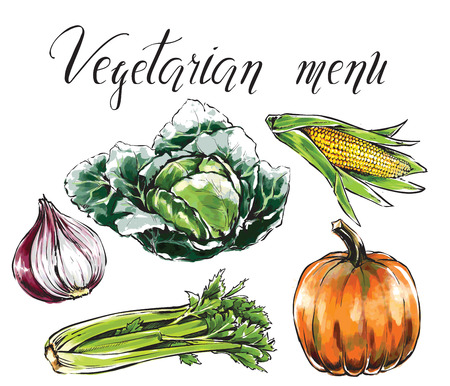 Set of vegetables: onion,corn,pumpkin,cabbage,chinese cabbage,celery. Healthy food for health care and vegetarian menu. Freehand watercolor vector illustration. Black contour, isolated object
