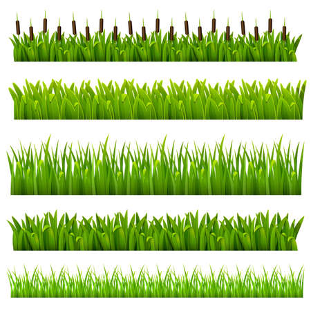 Illustration pour Set from grass of green border  can be repeated and scaled in any size  - image libre de droit