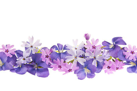 Arrangement of purple violets and moss pink flowers isolated on white background