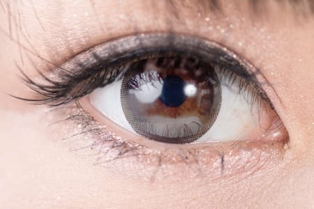 Foto de Beautiful woman eyes with long eyelashes. Asian model. Studio shot. - Imagen libre de derechos