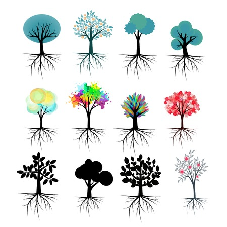 Illustrazione per Vector trees collection with roots - Immagini Royalty Free