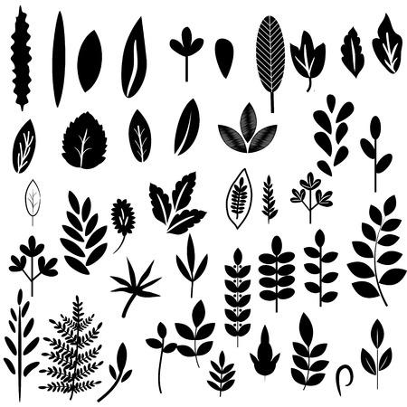 Illustration for Black and white leaves set - Royalty Free Image