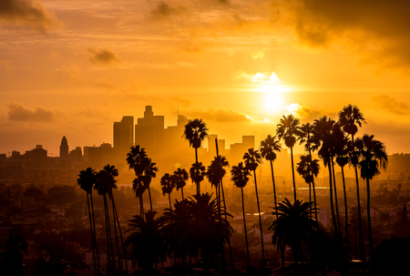 Foto de Downtown Los Angeles and Palm Trees Golden Hour - Imagen libre de derechos