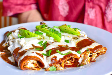 Photo pour Delicious enchiladas of great Mexican food, mole and cheese,typical mexican food. - image libre de droit
