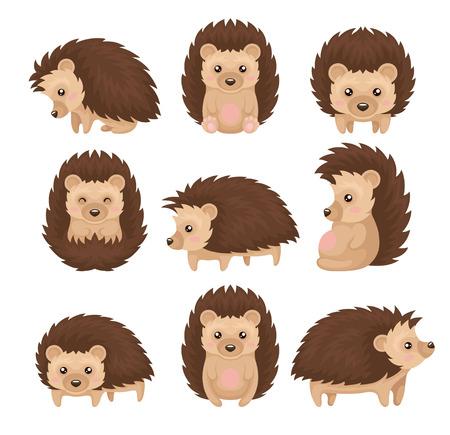 Ilustración de Cute hedgehog in various poses set, prickly animal cartoon character with funny face vector Illustration isolated on a white background. - Imagen libre de derechos