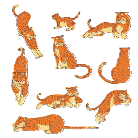 Illustrazione per Set of hand drawn tigers in different actions. Large wild cat with orange striped coat and long tail. Predatory animal. Kids drawing. Wildlife theme. Vector illustrations isolated on white background. - Immagini Royalty Free