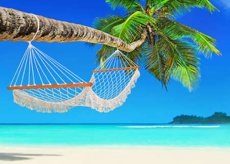 Photo for Wooden mesh hammock on perfect tropical white sandy coconut palm beach Baie Lazare, Mahe island, Seychelles, Indian Ocean - Royalty Free Image