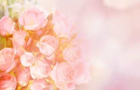 Foto de pink rose flower / soft color pink roses flower bouquet on table blur background - Imagen libre de derechos
