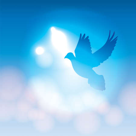 Illustration pour An illustration of a silhouetted dove flying against a blue background with soft bokeh lighting. Vector EPS 10 available. EPS file contains transparencies. - image libre de droit