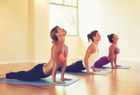 Foto de Group of People Relaxing and Doing Yoga. Practicing Cobra Pose. Wellness and Healthy Lifestyle. - Imagen libre de derechos